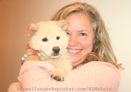 Puppy rescued from Chinese dog meat market now an 'ambassador' for animal welfare, with new 'mom' Leslie Barcus
