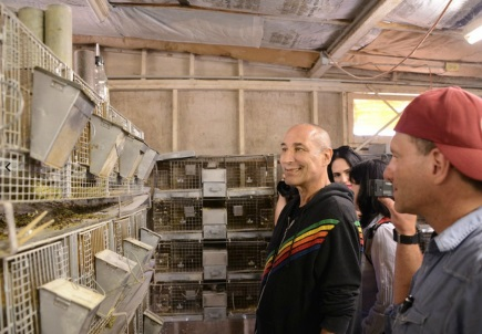 """The Simpsons"" co-creator Sam Simon, who financed the rescue and after-care for the chinchillas inspects the animals awaiting transport to San Diego Humane Society PhotoPETA"